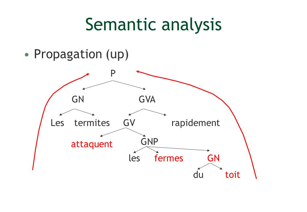 Semantic analysis Propagation (up) P GN GVA Les termites GV rapidement
