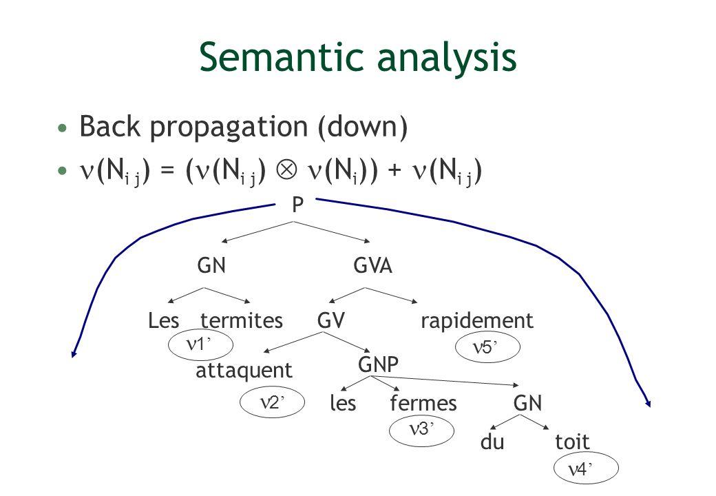 Semantic analysis Back propagation (down)