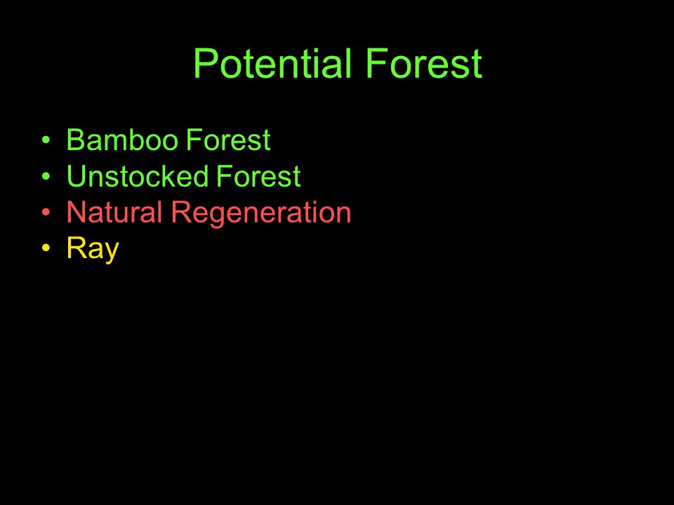 Potential Forest Bamboo Forest Unstocked Forest Natural Regeneration
