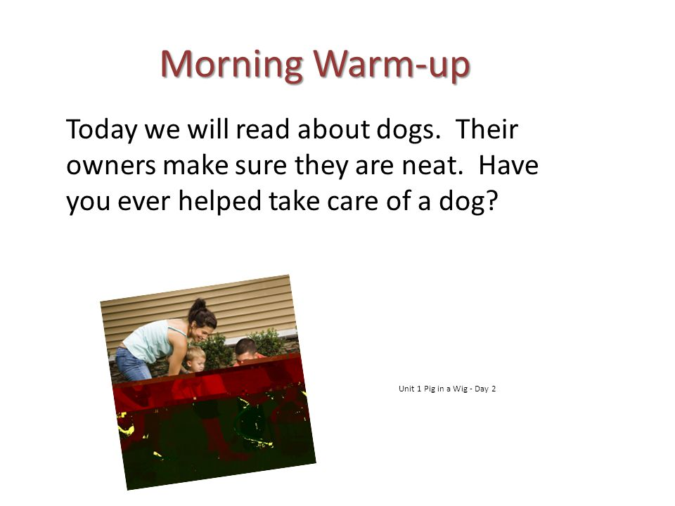 Morning Warm-up Today we will read about dogs. Their owners make sure they are neat. Have you ever helped take care of a dog