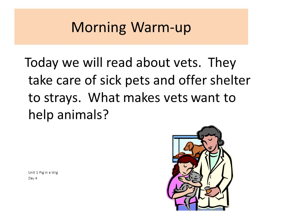 Morning Warm-up Today we will read about vets. They take care of sick pets and offer shelter to strays. What makes vets want to help animals
