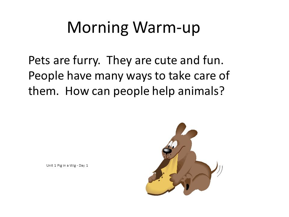 Morning Warm-up Pets are furry. They are cute and fun. People have many ways to take care of them. How can people help animals