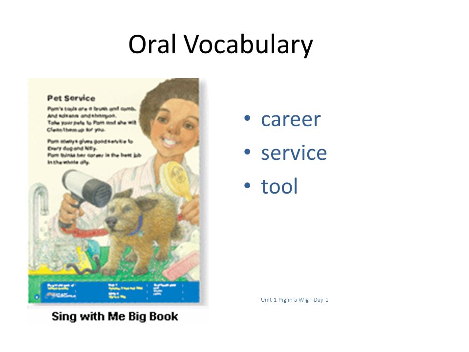 Oral Vocabulary career service tool Unit 1 Pig in a Wig - Day 1
