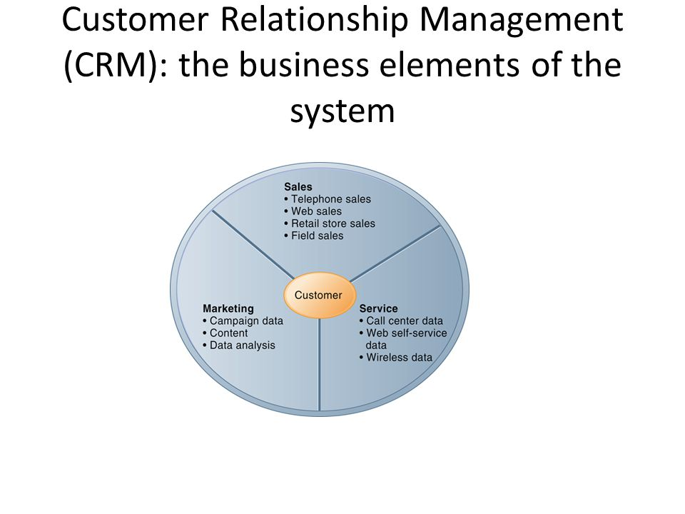 Customer Relationship Management (CRM): the business elements of the system
