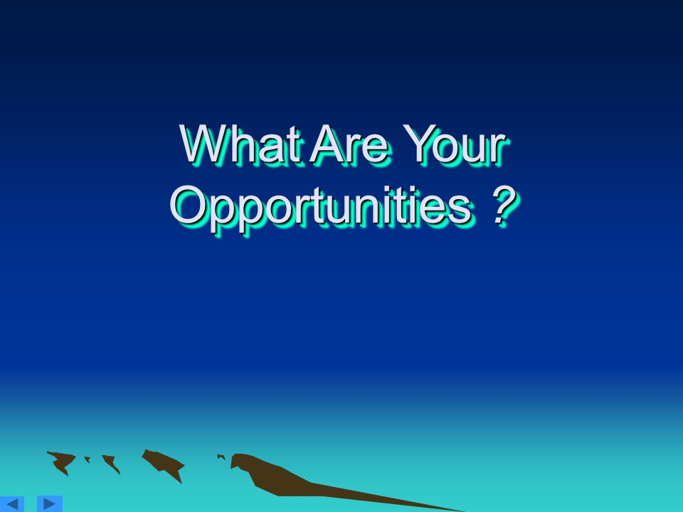 What Are Your Opportunities