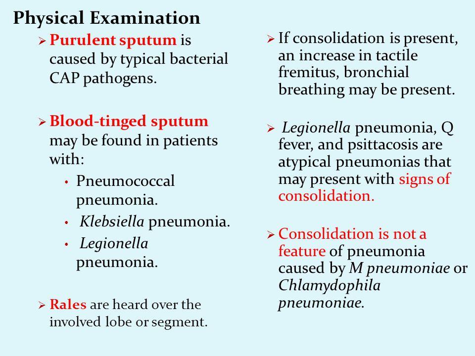community acquired pneumonia & atypical pneumonia - ppt download, Skeleton