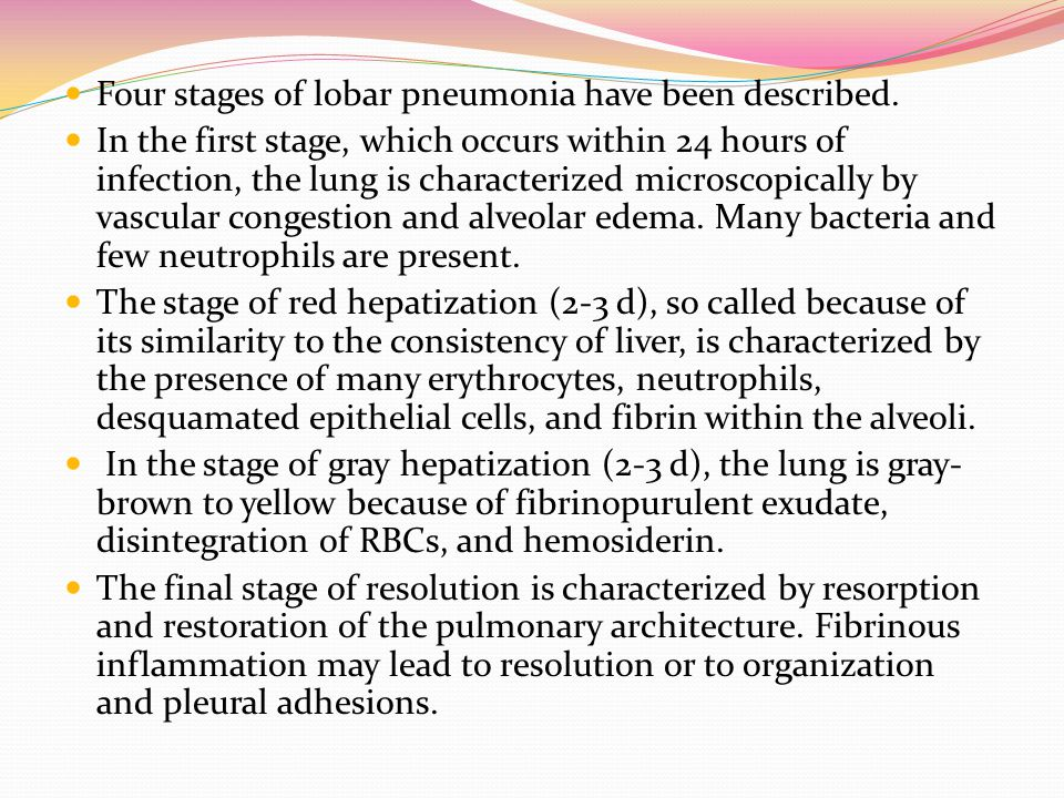 Four stages of lobar pneumonia have been described.