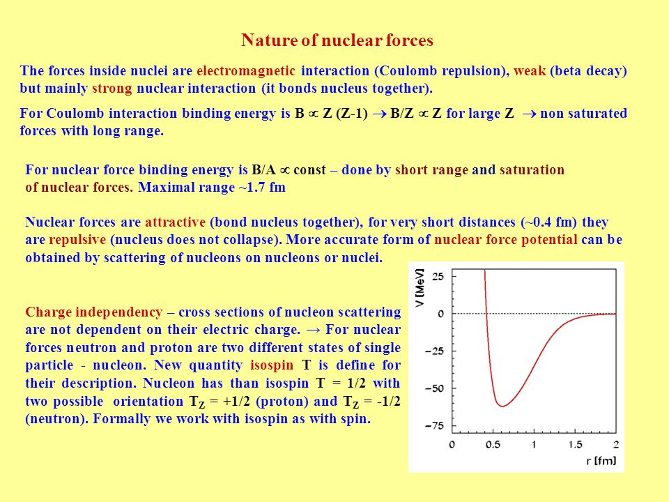 phenomenological properties of nuclei ppt video online