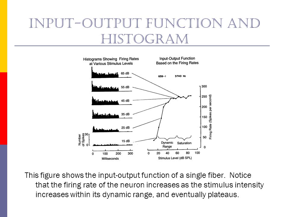 Input-output function and histogram