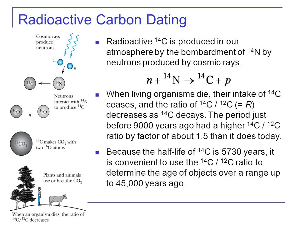 Radiocarbon dating in a sentence