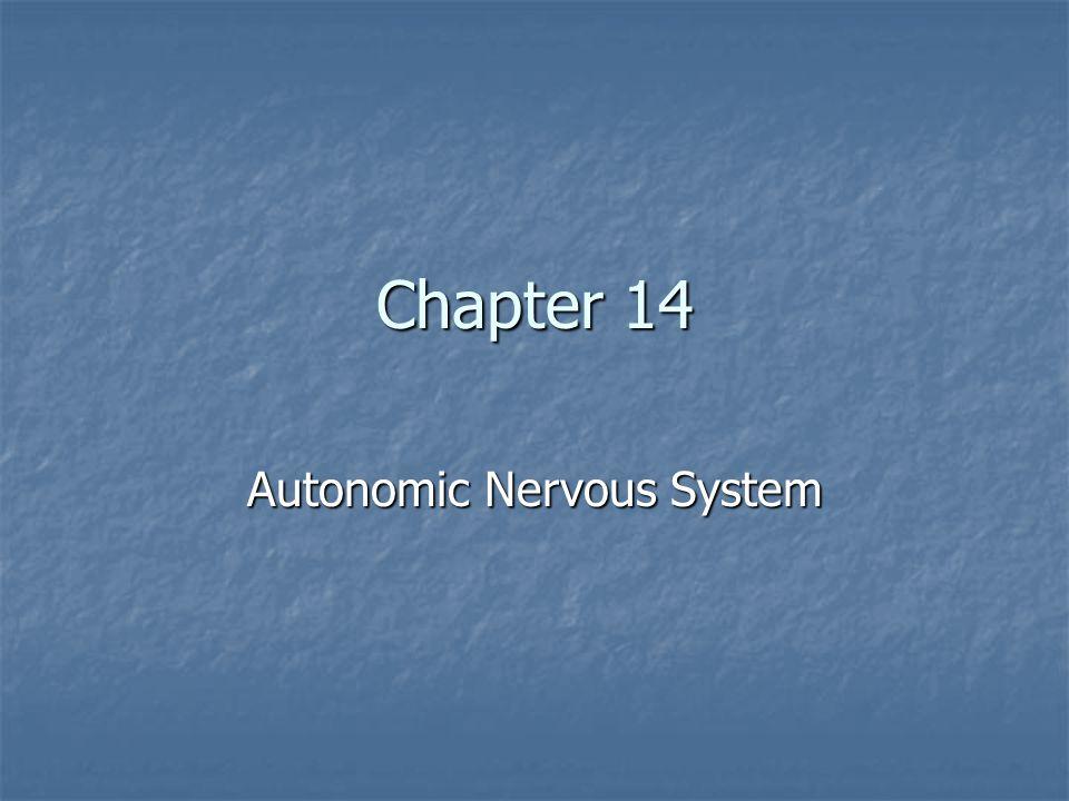 Autonomic Nervous System Chapter 14 Autonomic Nervous System. - ppt ...