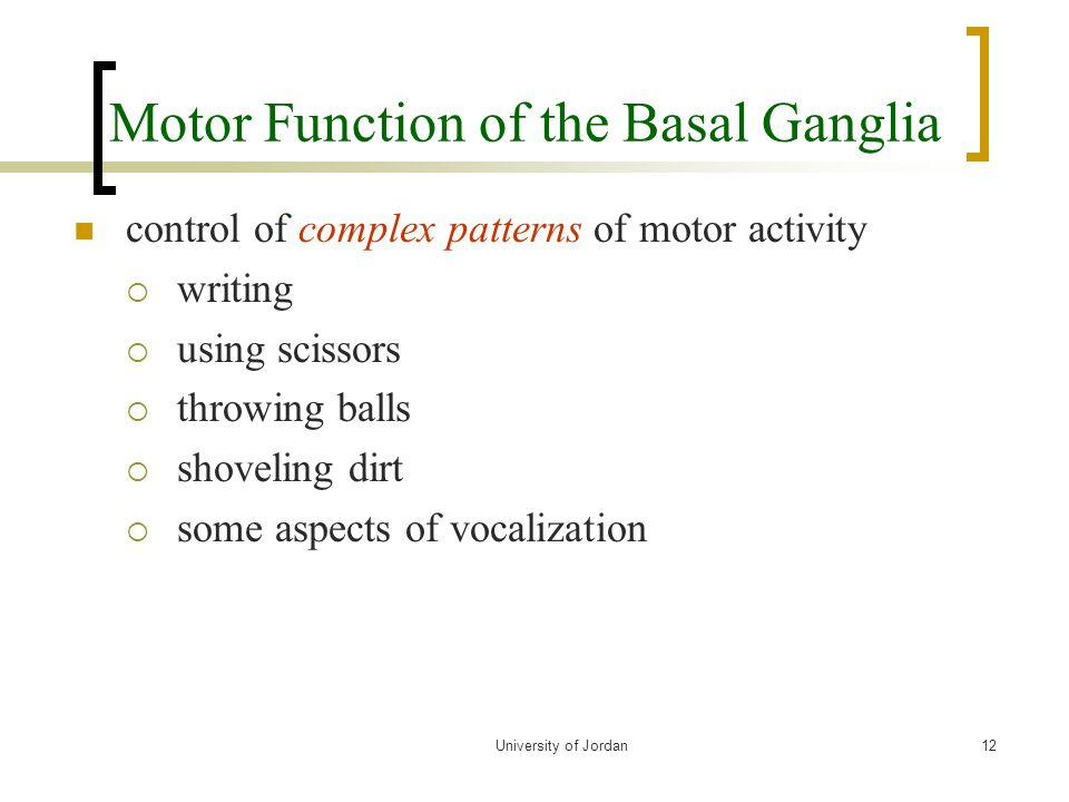 Motor Function of the Basal Ganglia