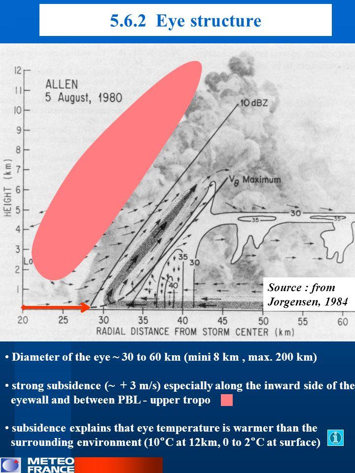 5.6.2 Eye structure Source : from Jorgensen, 1984