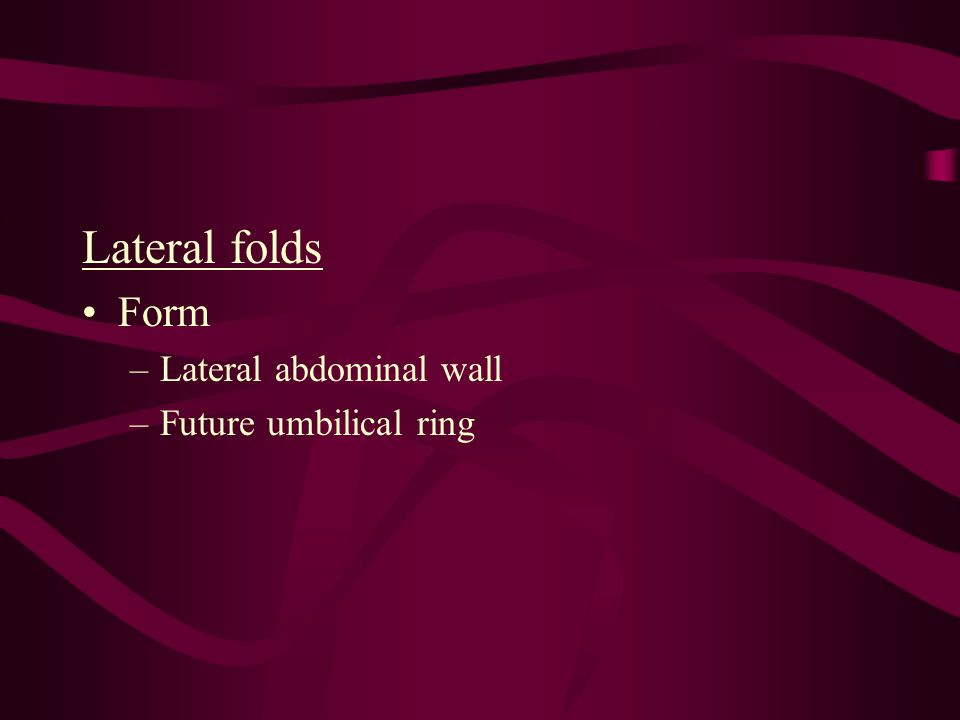 Lateral folds Form Lateral abdominal wall Future umbilical ring