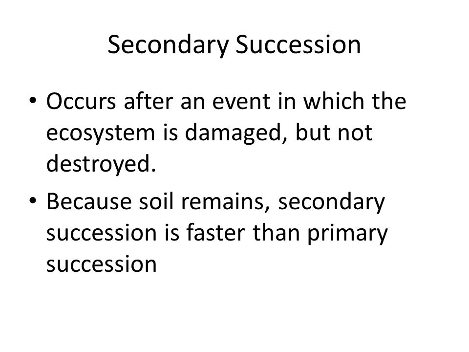 ECOLOGICAL SUCCESSION Obj 11D ppt download – Primary and Secondary Succession Worksheet