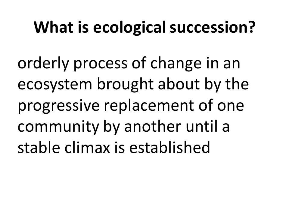 ECOLOGICAL SUCCESSION Obj 11D ppt download – Ecological Succession Worksheet