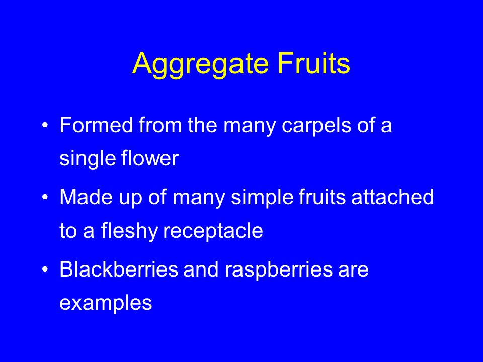 Aggregate Fruits Formed from the many carpels of a single flower