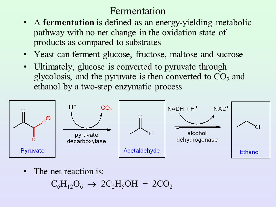 Synthesis of Ethanol by Simple and Fractional Distillation