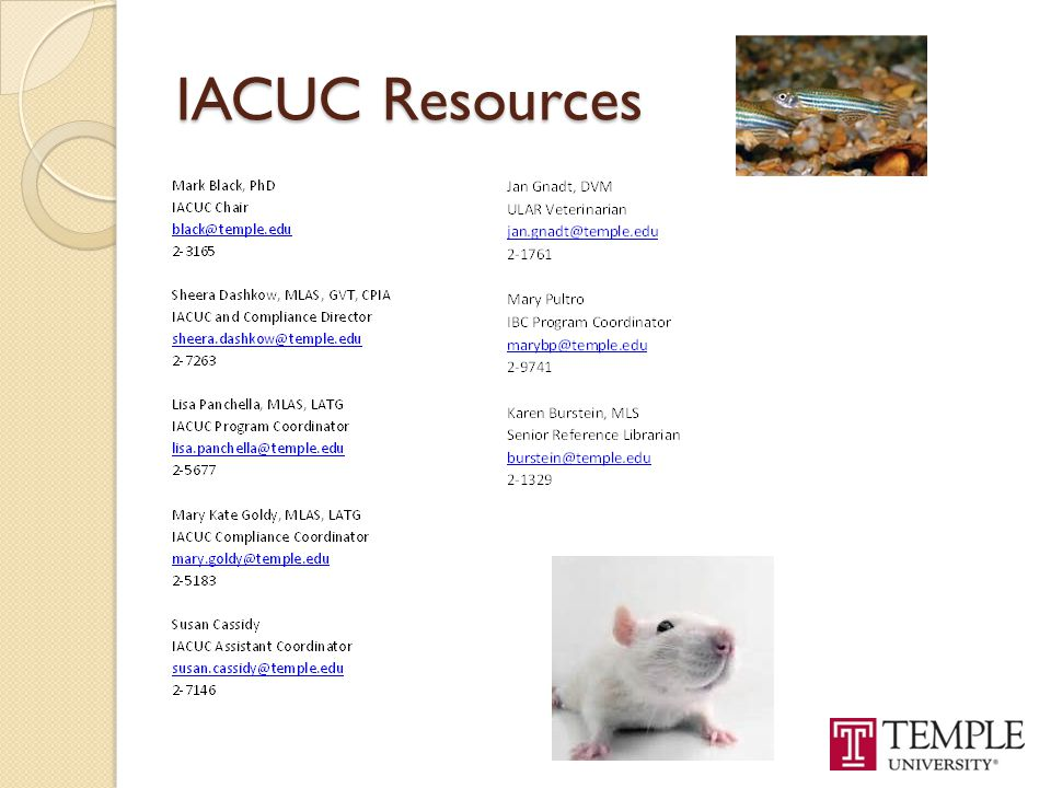 IACUC Resources