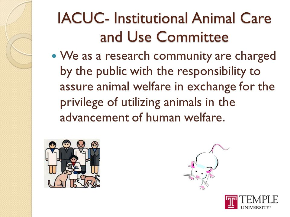IACUC- Institutional Animal Care and Use Committee