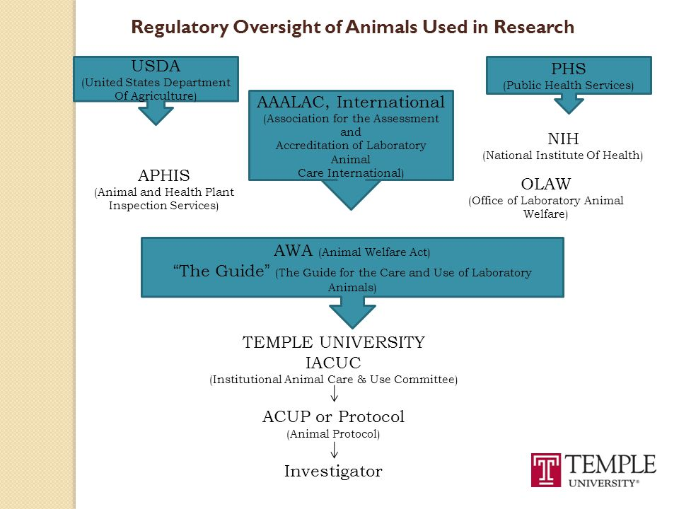 Regulatory Oversight of Animals Used in Research