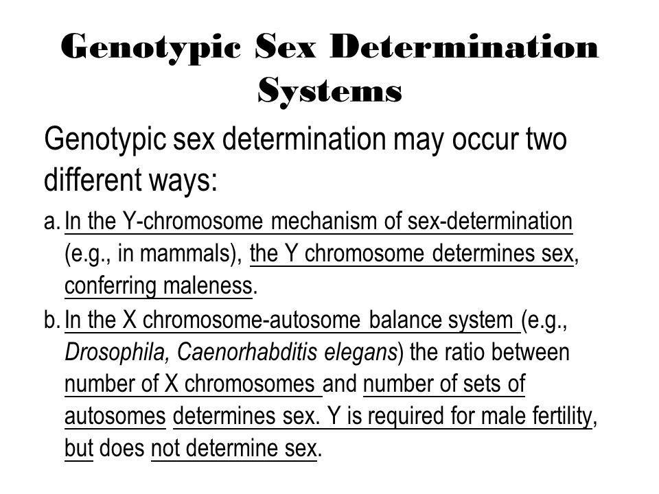 Determination Of Sex 28