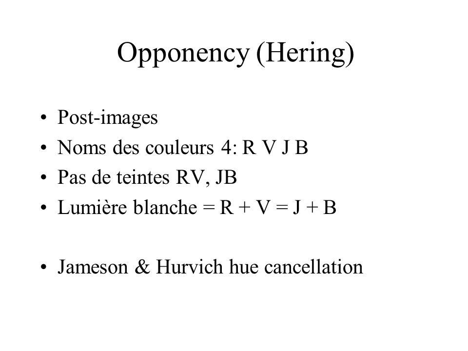 Opponency (Hering) Post-images Noms des couleurs 4: R V J B