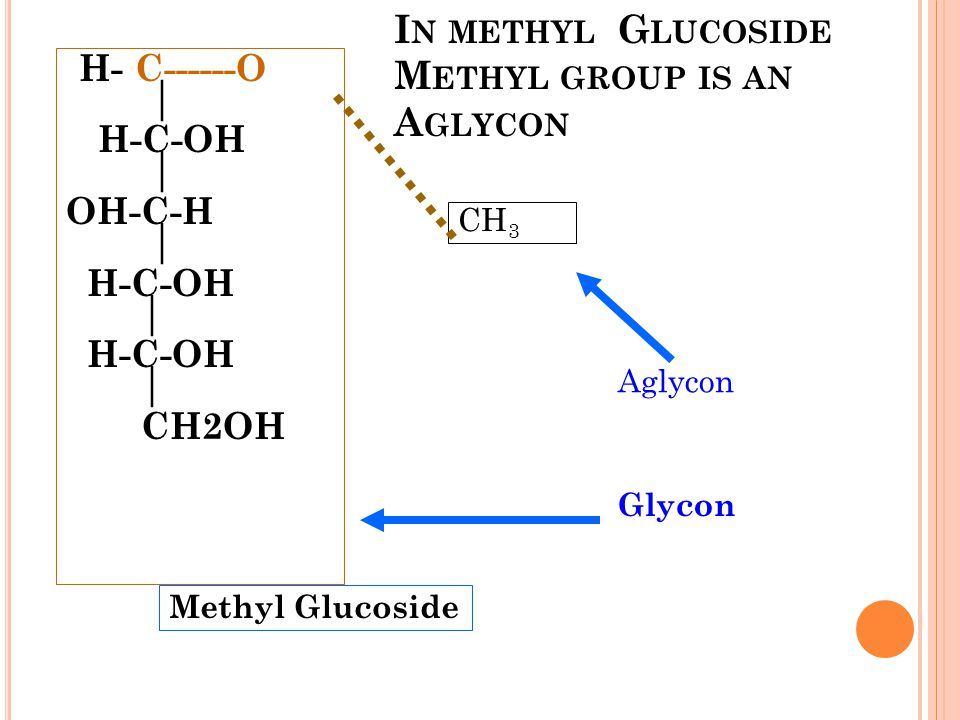 In methyl Glucoside Methyl group is an Aglycon