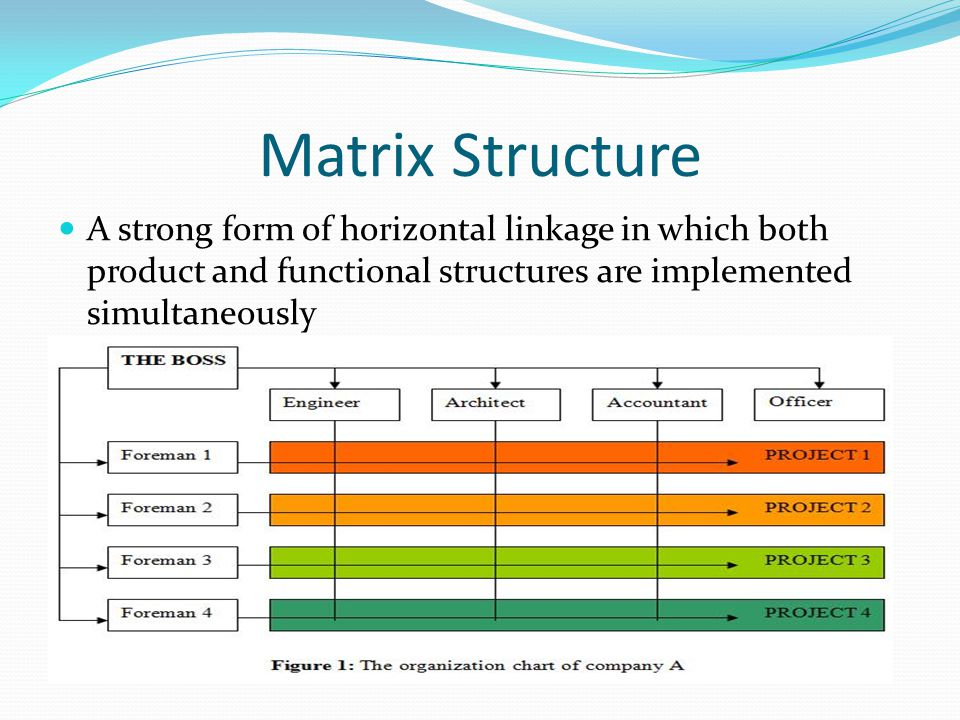the functional structure Video created by university of illinois at urbana-champaign for the course  corporate strategy this module focuses on the fit between corporate strategy and organizational structure with particular emphasis on diversification strategy and.