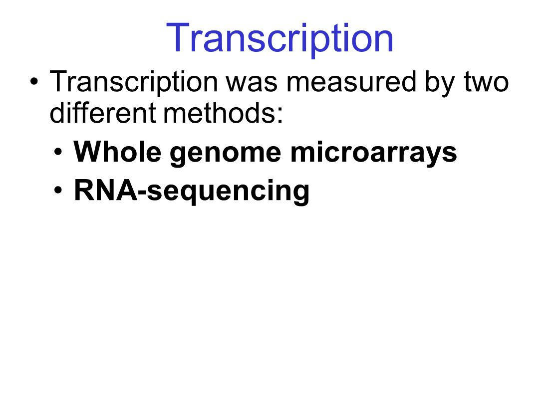 Transcription Transcription was measured by two different methods: