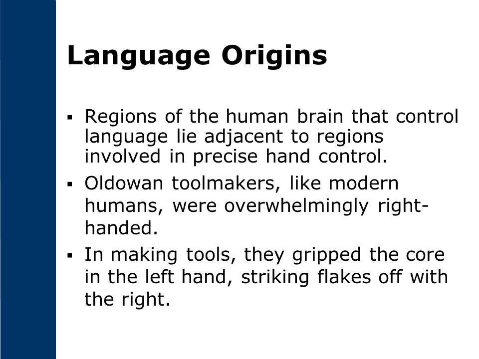 Language Origins Regions of the human brain that control language lie adjacent to regions involved in precise hand control.