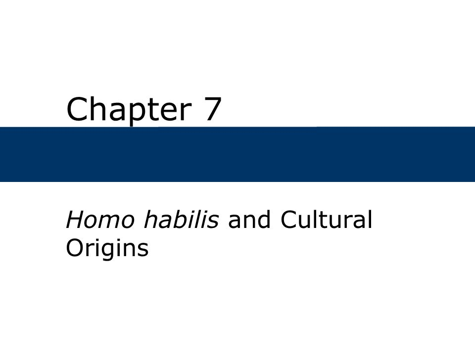 Homo habilis and Cultural Origins