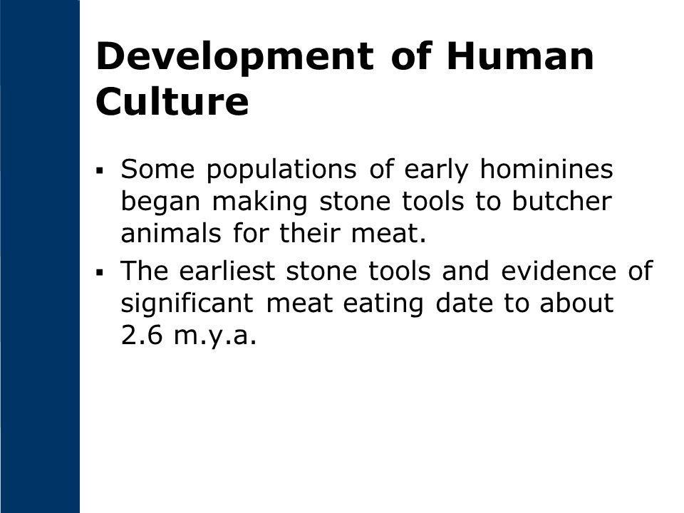 Development of Human Culture