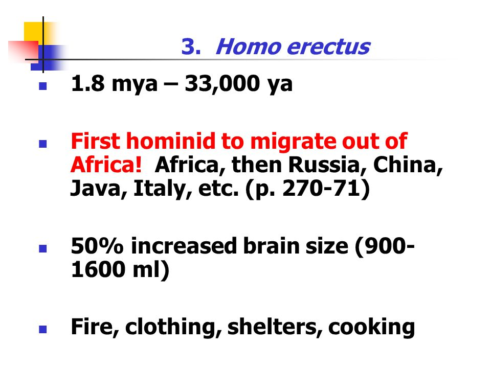3. Homo erectus 1.8 mya – 33,000 ya. First hominid to migrate out of Africa! Africa, then Russia, China, Java, Italy, etc. (p )