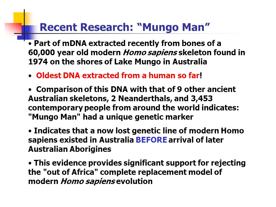 Recent Research: Mungo Man