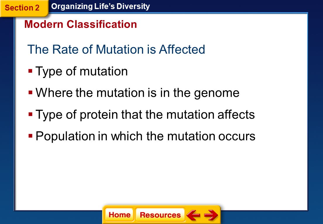 The Rate of Mutation is Affected
