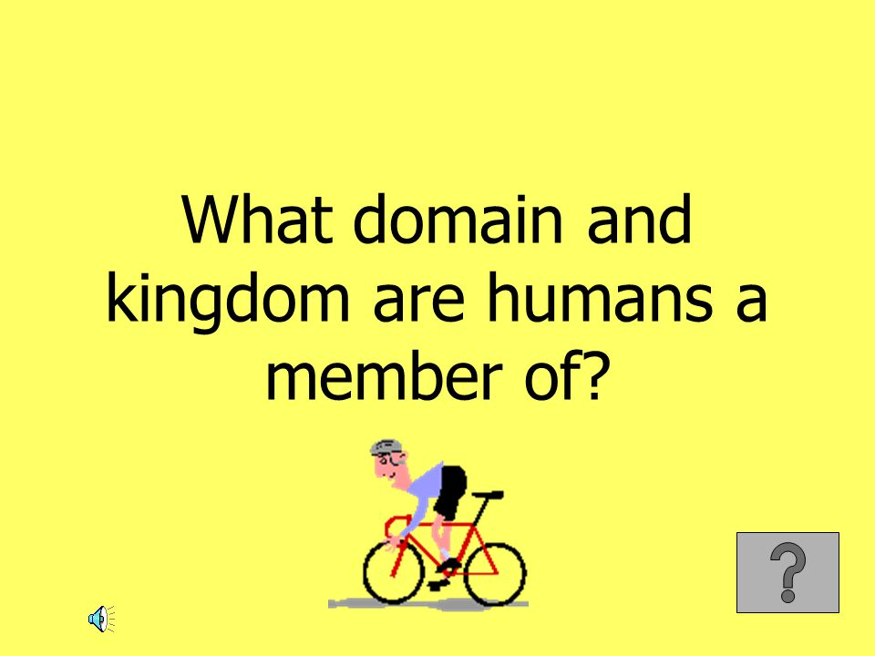 What domain and kingdom are humans a member of