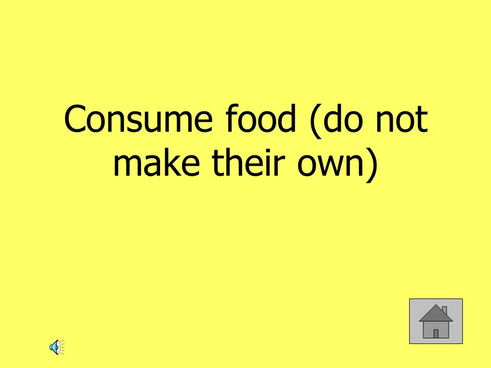 Consume food (do not make their own)