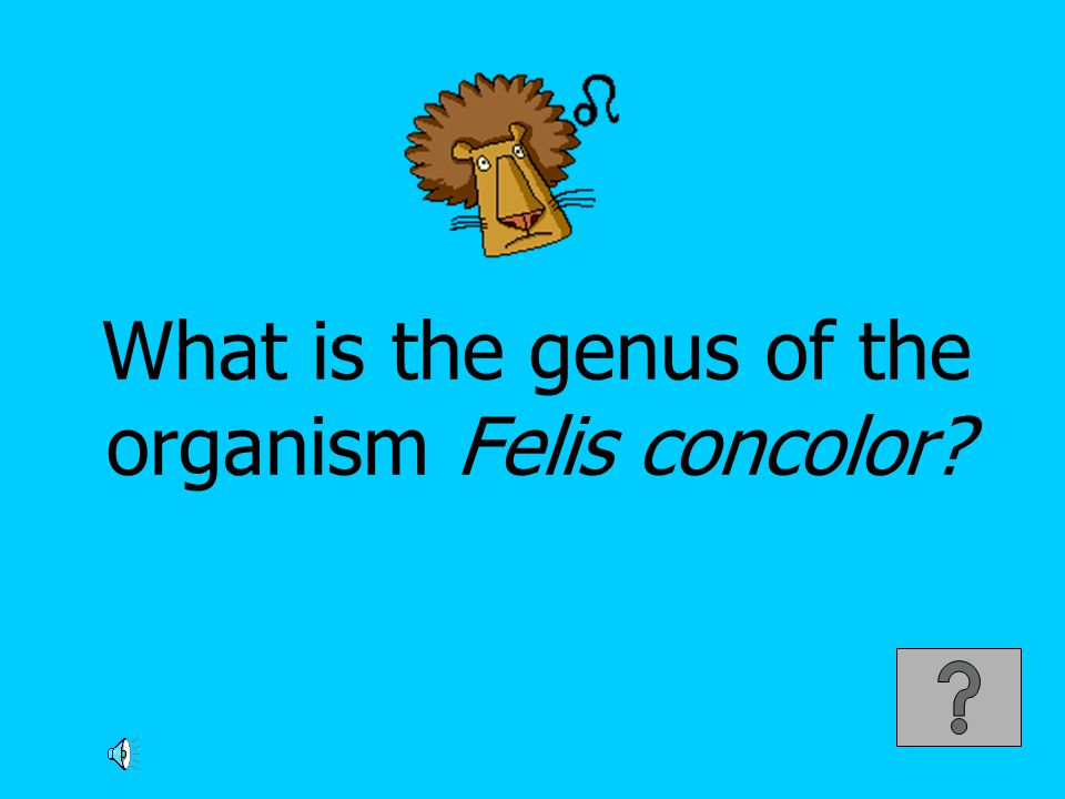 What is the genus of the organism Felis concolor