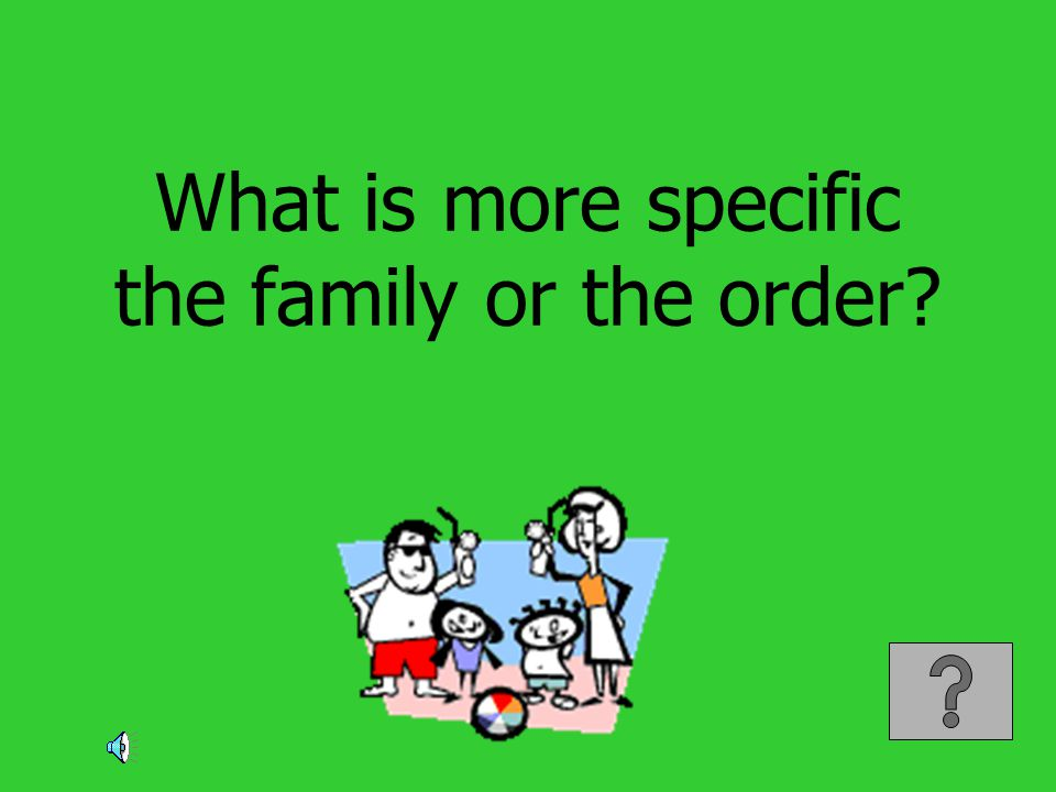 What is more specific the family or the order