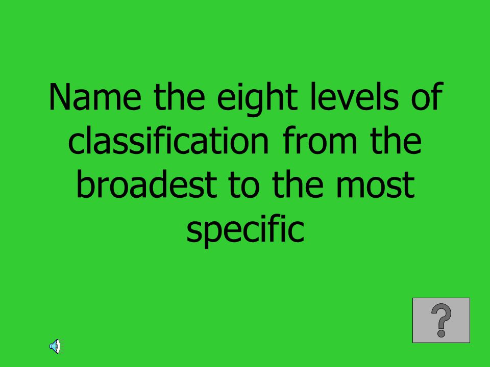 Name the eight levels of classification from the broadest to the most specific