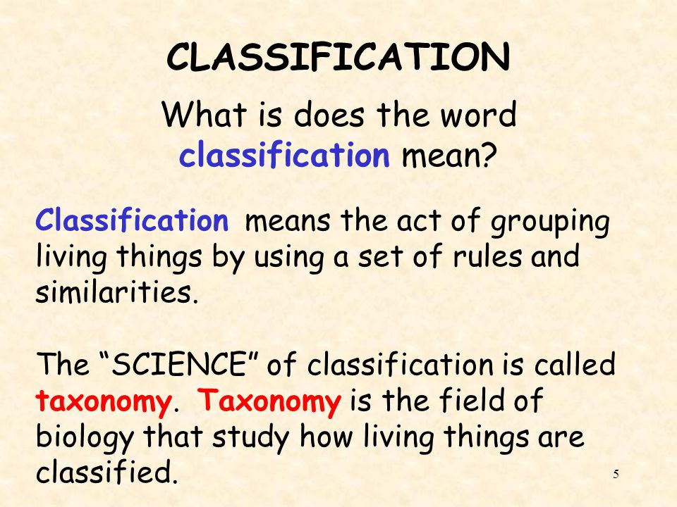 What is does the word classification mean