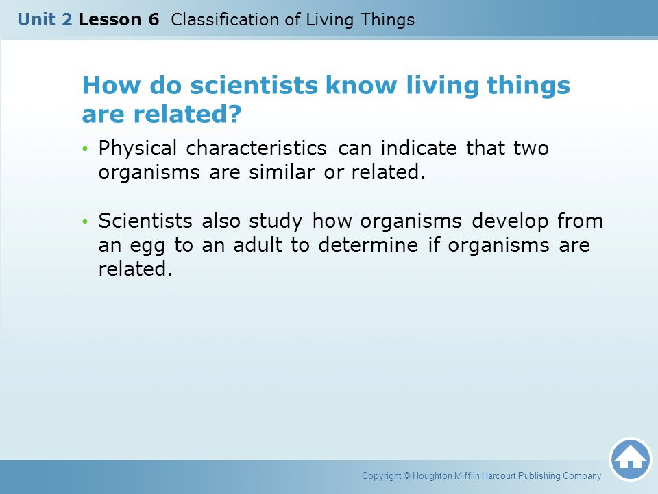 How do scientists know living things are related
