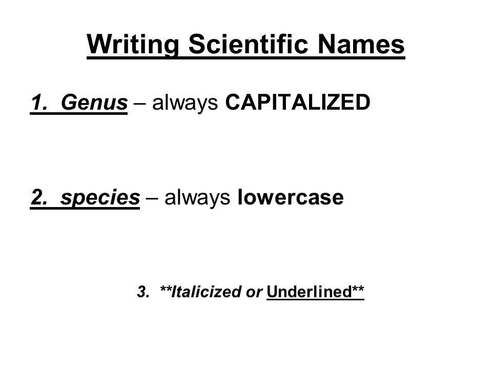 Classification. - ppt download