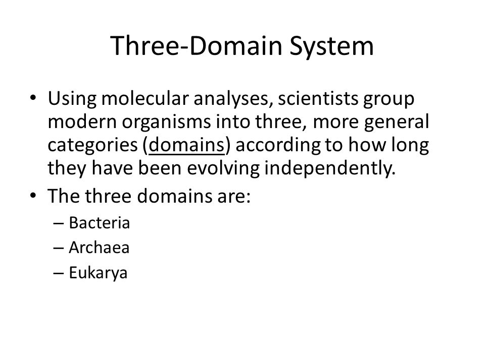 Classification of Life - ppt video online download