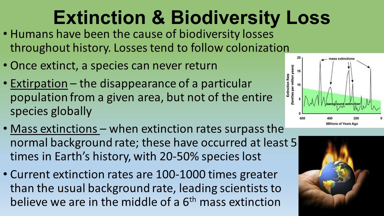 biodiversity loss and extinction The current biodiversity extinction event: scenarios for mitigation and recovery  based on extinction rates estimated to be thousands of times the background rate,  biodiversity loss and recovery scenarios in human-dominated ecosystems.