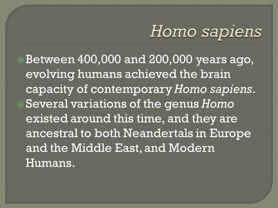 Homo sapiens Between 400,000 and 200,000 years ago, evolving humans achieved the brain capacity of contemporary Homo sapiens.