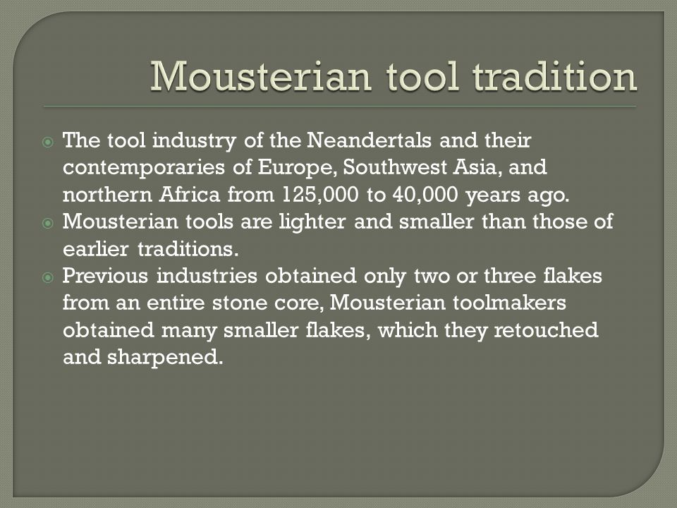 Mousterian tool tradition