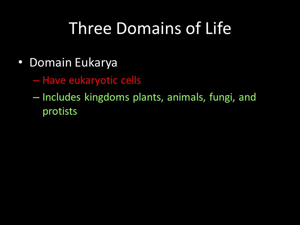 Three Domains of Life Domain Eukarya Have eukaryotic cells