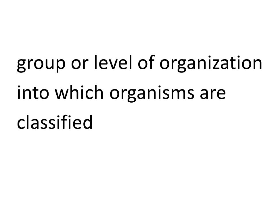 group or level of organization into which organisms are classified
